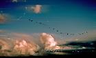 Kromofonica nuvole fen