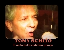 tony schito tony schito - photo